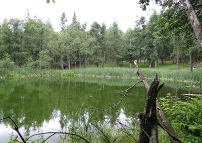 14. Lacul Tarnita din Muntii Berzunti