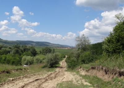 36. Dispre Sighisoara spre satul Hoghilag