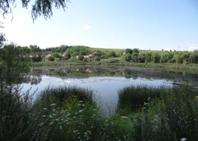 46. Lacul Chereteu de la Blaj